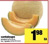 Foodland ONTARIO cantaloupe